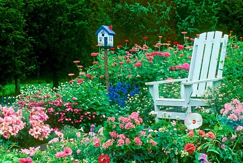 Adirondack Chair in Colorful Garden...