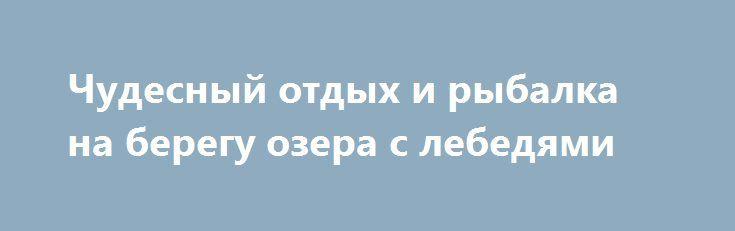 Чудесный отдых и рыбалка на берегу озера с лебедями http://brandar.net/ru/a/ad/chudesnyi-otdykh-i-rybalka-na-beregu-ozera-s-lebediami-2/  Отдых именно для тех,кто хочет отдохнуть душой и телом, успокоить нервы,подышать свежайшим воздухом,попить парного молочка, а также послушать пение птиц,плеск воды, треск костра и тд..., тишина и покой Вам гарантированы на все время Вашего пребывания. Дом находится в селе Житники в 7 километрах от Жашкова, 50 км. от Белой Церкви и 136 от Киева, на самом…