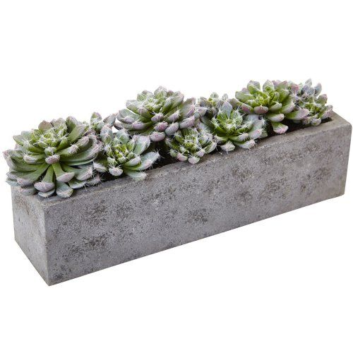 Nearly Natural Garden Succulent Silk Plant with Concrete Planter - Silk Plants at Hayneedle