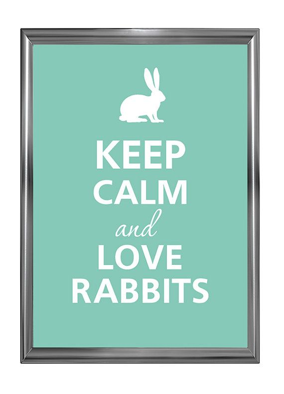 Hey, I found this really awesome Etsy listing at https://www.etsy.com/listing/87935833/keep-calm-and-love-rabbits