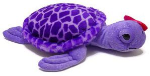 Purple Turtle, ready for a new home!