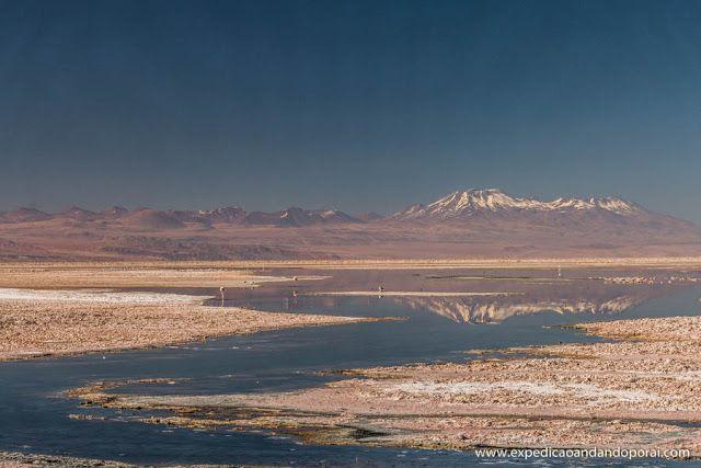 Laguna Chaxa em San Pedro de Atacama