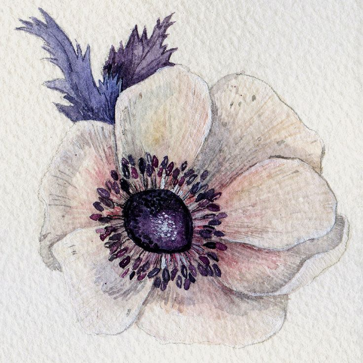 A personal favorite from my Etsy shop https://www.etsy.com/ru/listing/267634257/original-watercolor-painting-of-white