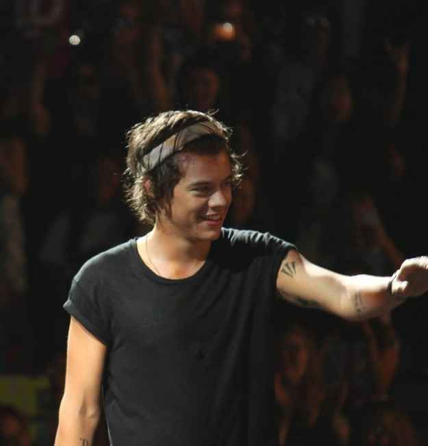 His cotton crown.   An Ode To Harry Styles' Headband