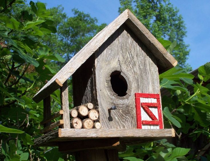 101 best images about projects to try on pinterest for Creative birdhouses