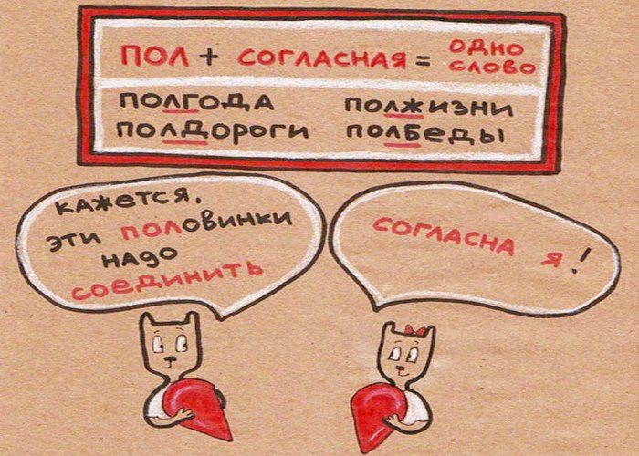 Анна Беловицкая – преподаватель с солидным стажем, – считает, что самая сложная информация усваивается без проблем, если подана с юмором. Чтобы помочь писать грамотно, она нарисовала забавные картинки, которые помогают запомнить правила благодаря ассоциативной связи между словами. Правила в котах будут, безусловно, полезны и взрослым, и детям.