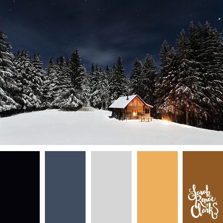 Cold color inspiration // Winter Color Schemes // Click for more winter color combinations, mood boards and seasonal color palettes at http://sarahrenaeclark.com #color #colorscheme #colorinspiration