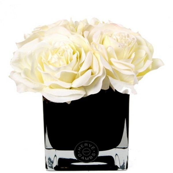 Herve Gambs White Couture Large Roses Amp Small Black Glass