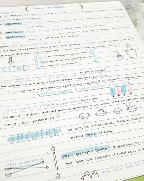 """studypasta: """" My science note are prettier than me oops"""