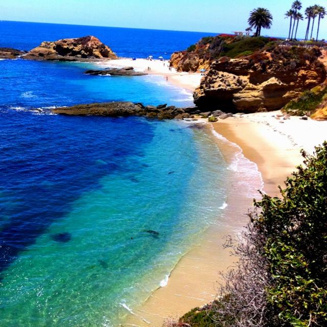 Laguna Beach Scuba Diving