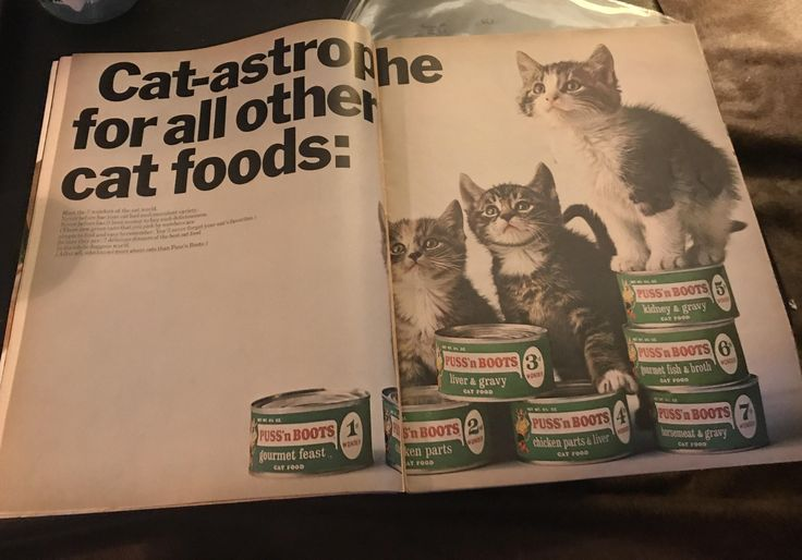 Puss'n Boots Cat Food | LIFE Magazine 1967 #vintageads #Ads #vintage #PrintAd #tvads #advertising #BrandScience #influence #online #Facebook #submissions #marketing #advertising