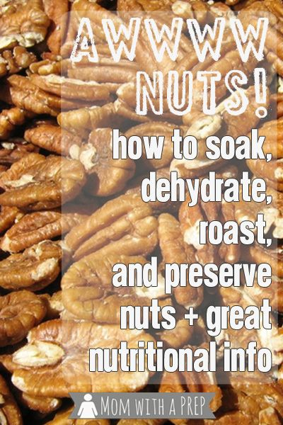Mom with a PREP | Nuts & Seeds can be a viable option for protein & other nutrients. Learn to roast, grind, dehydrate and store them for long-term storage.