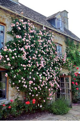 country home in France; I think my front bed roses could do this with the right support.