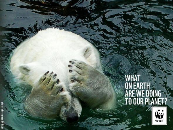 WWF - Que diable êtes-vous en train de faire à notre planète ? (Uncle Grey)