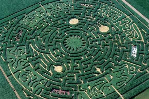 Labyrinthe (adjective) Full of confusing passageways; intricate; complicated