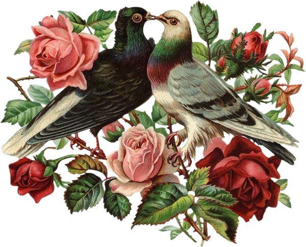 Клипарты к дню Святого Валентина.: ♥ Creative NN. Блог Альбины Рассеиной. ♥