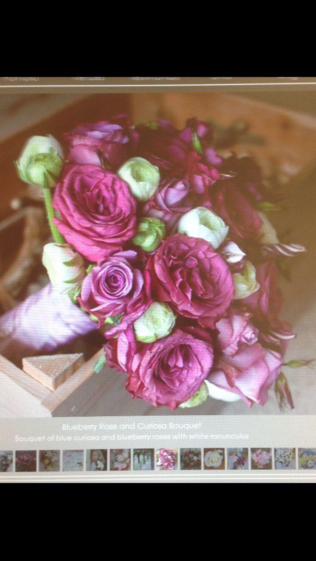 Flower colour