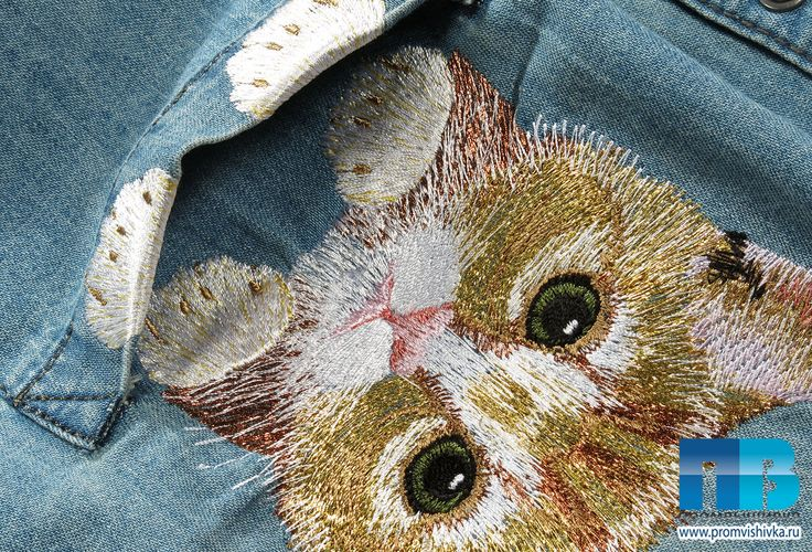 Котик в кармане #embroidery #cat #кошки #вышивка