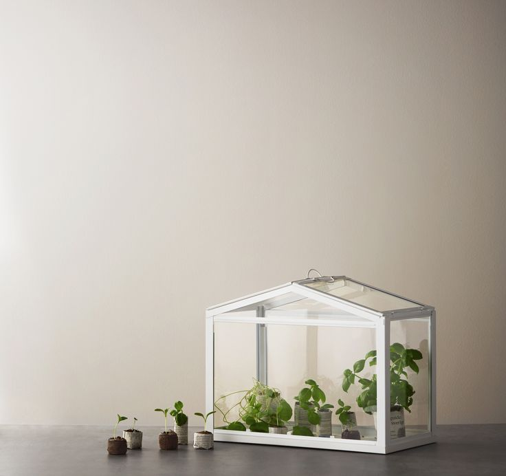 ... 2017 #IKEA #IKEAnl #kas #planten #groen #glas #binnen #mini #moestuin