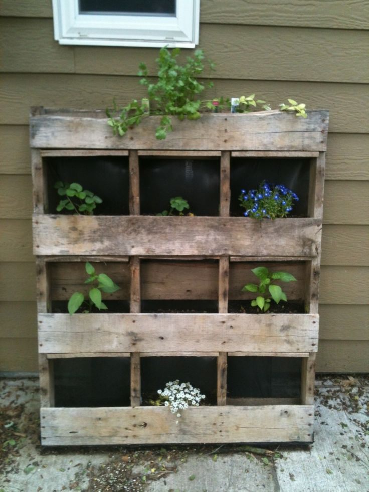 A creative way to reuse a pallet and turn it into a garden. Easy and effective!