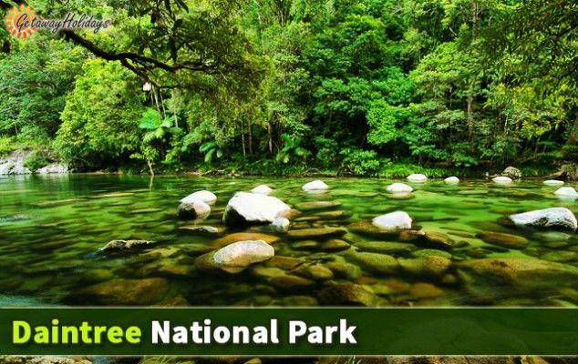 Reasons to Visit #Cairns, #Australia:  Daintree National Park
