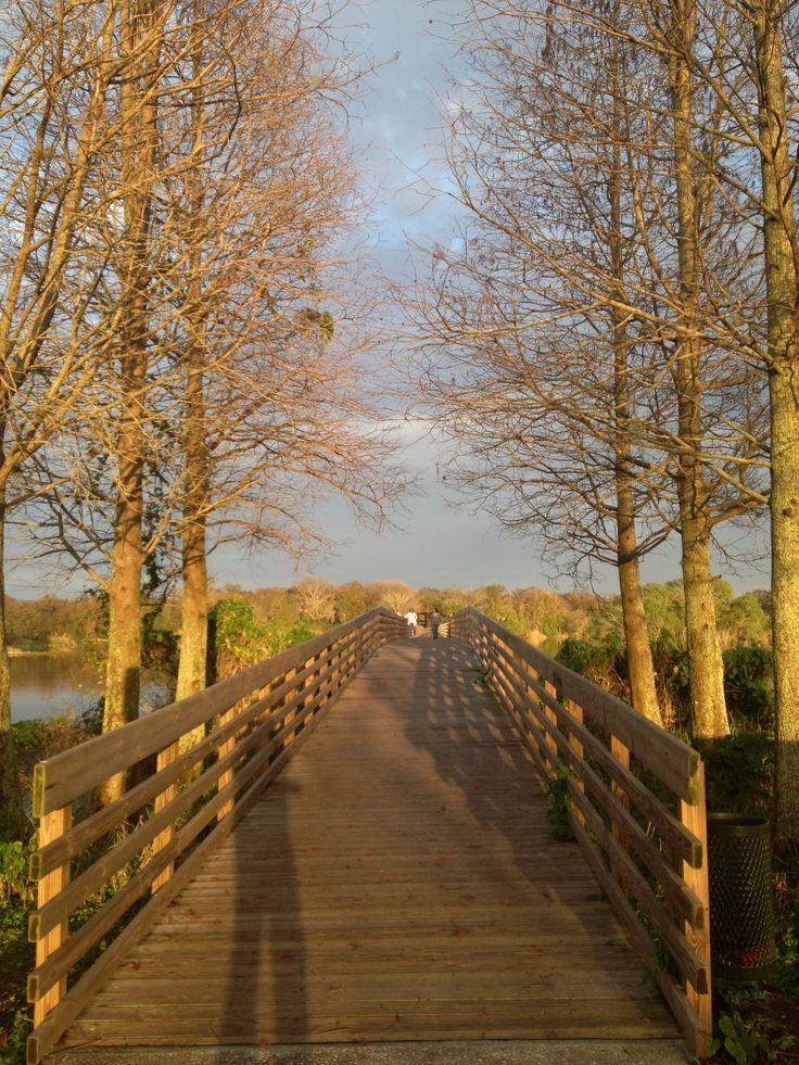 Medard Park