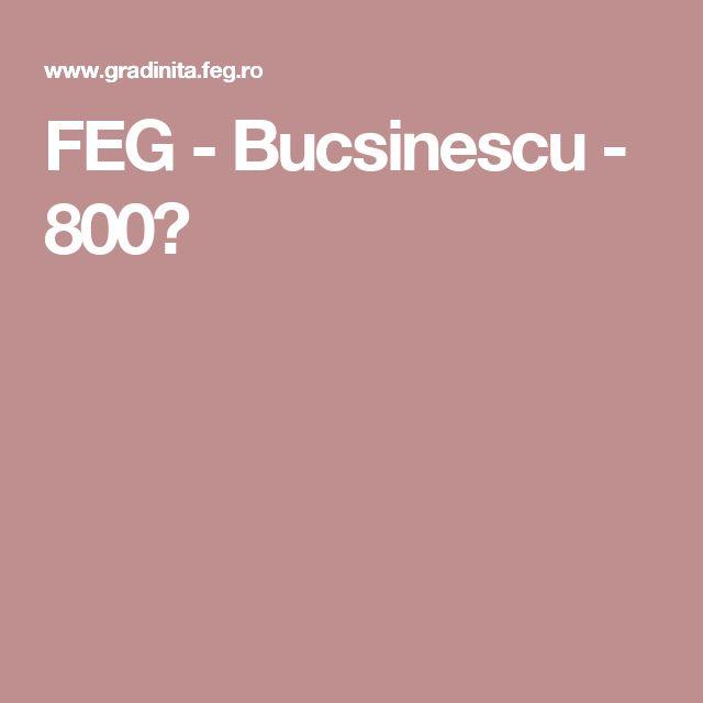 FEG - Bucsinescu - 800?