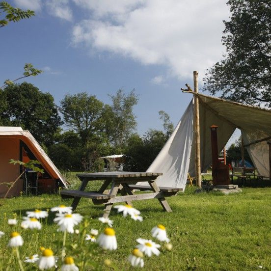 19 Best Images About Camping On Pinterest: 19 Best Camping & Glamping Holland Images On Pinterest