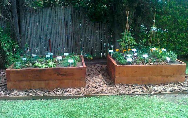 M s de 25 ideas fant sticas sobre plantas para cercos en for Jardin vertical sodimac