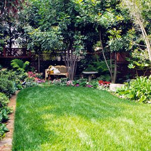 Best 25 lawn care tips ideas on pinterest lawn care grass fertilizer and spring plants Better homes and gardens planting guide