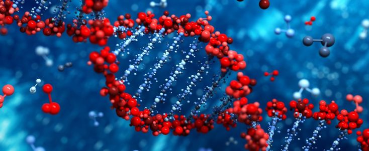 UT Southwestern Researchers Identify Mutations Involved in Familial Pulmonary Fibrosis and Telomere Shortening