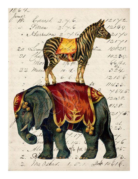 A4 Print Circus Elephant and Zebra on Vintage Ephemera by adidit