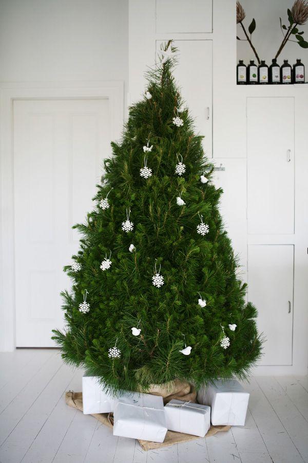 father rabbit christmas tree.