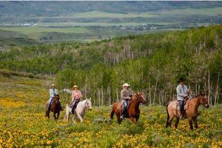 FERIE PÅ HESTERYG: En ferie på hesteryg er en fornøjelse, hvor naturen og ridning går op i en højere enhed. #hesteferie #rideferie #hest #rytter #ferie #rejser