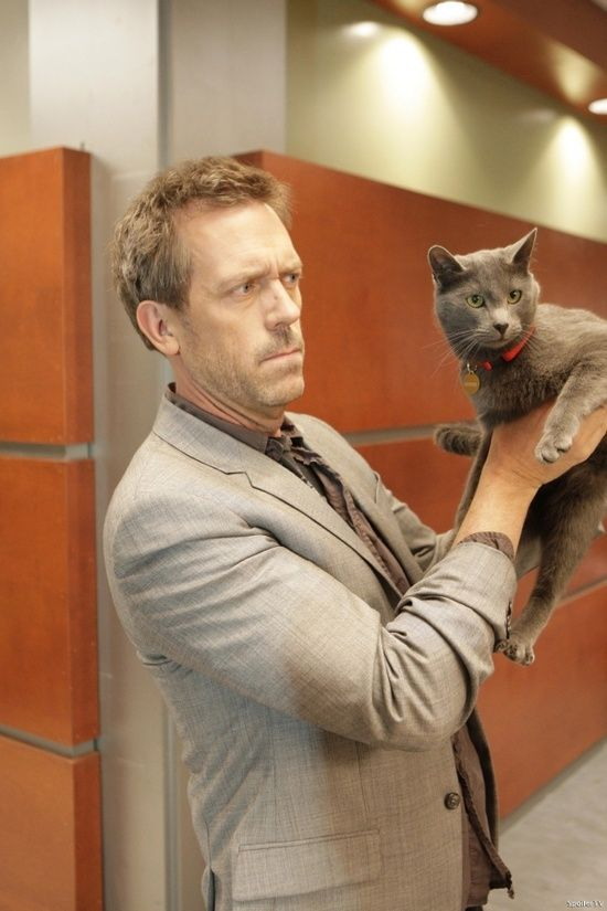 Hugh Laurie and his Cat .