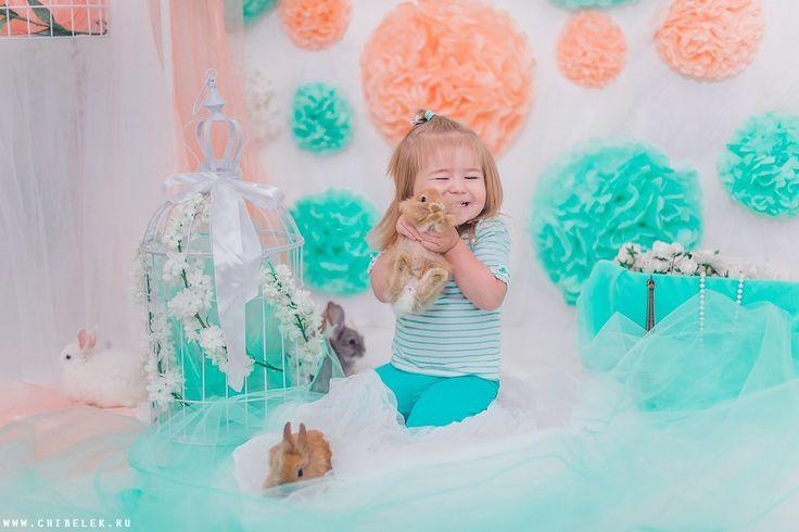 Rabbit, kids, photo session, photo, blue, look, photostudio