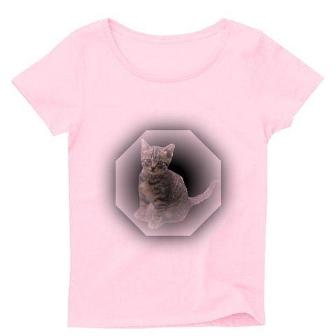 可愛らしいキジトラ子猫を、風水的に良いとされる八角形と組み合わせました。(=^.^=)