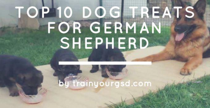 top 10 Dog Treats for German Shepherd