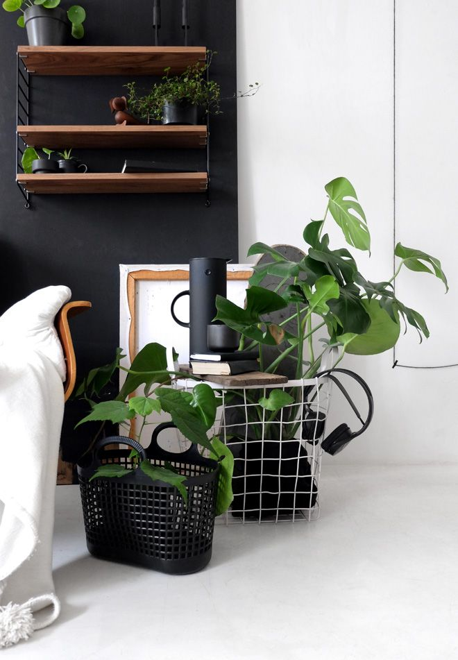 282 besten minza will sommer I blog Bilder auf Pinterest - pflanzen dekoration wohnzimmer
