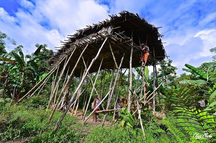 Про Шангри-Ла, Новую Гвинею и смысл жизни. Часть 4 / Репортажи / Моя Планета