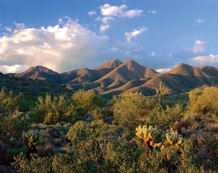 The amazing McDowell Mountains in Scottsdale, AZ!! Lovely to look at and great to hike:)  #Scottsdale