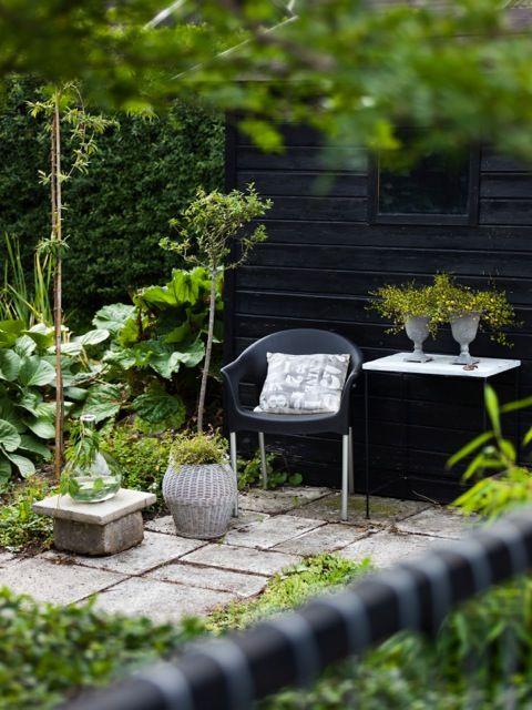 My garden in Sweden 175 - Foto: Martin Olson