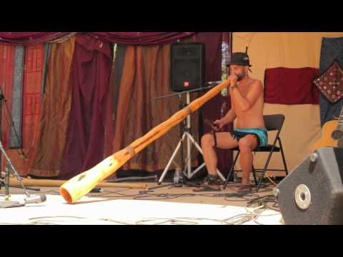 Didgeridoo Solo, Dan Flynn, Computer Aided Didgeridoo Sound Design, InDidjInUs 2012 - YouTube