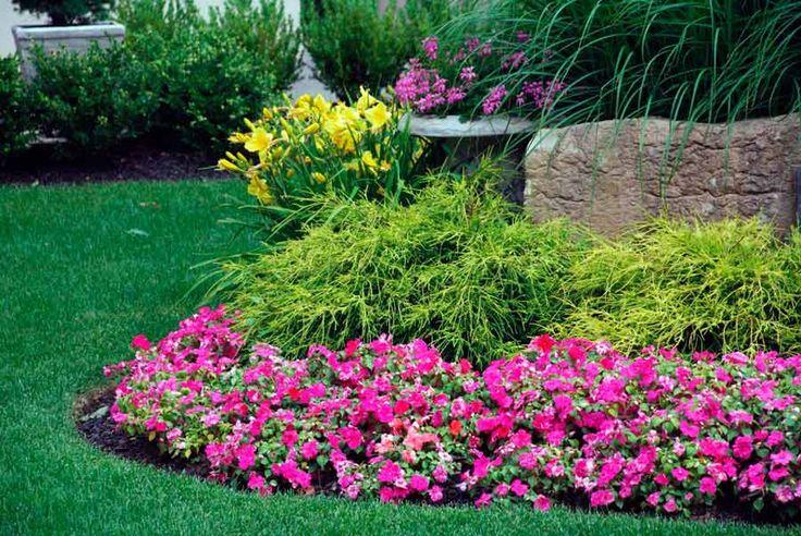 Полив комнатных растений. Как правильно поливать цветы.