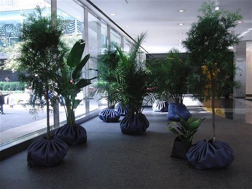 Dumpling, Modern Architecture, Planters, Herb Garden Planter, Contemporary  Architecture, Plant, Pots, Container Plants