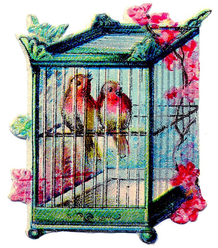 Vintage Clip Art - Pretty Birds in Asian Style Bird Cage - The ...