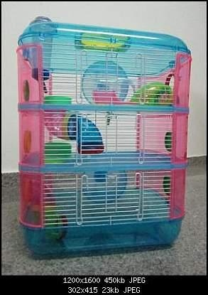 3 Story hamster cage!  I'm sure B would love this for Ginger