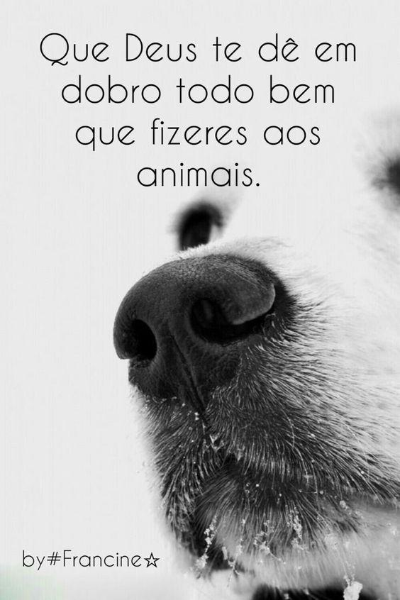 AMÉM! <3<3 <3 #petmeupet #cachorro #filhode4patas #maedecachorro #paidecachorro #anjode4patas