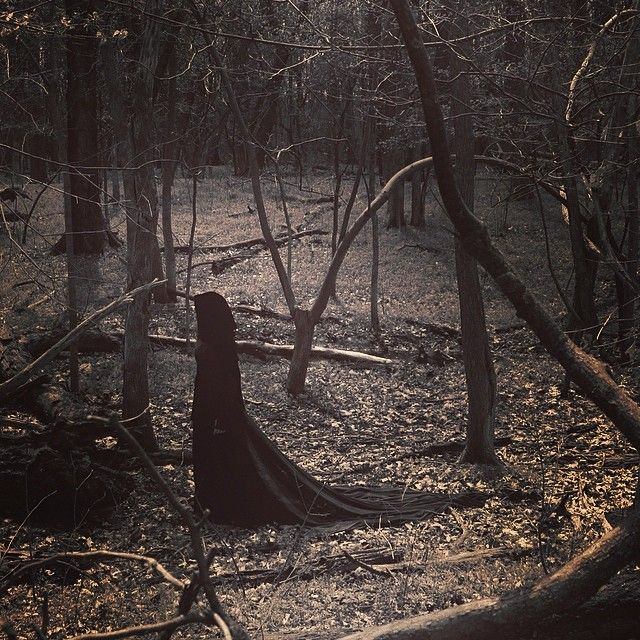 """Rose stalked through the woods. """"Angel"""" she thought in that quiet voice. """"Over here."""" A voice responded to her thought. Angel stepped out of the shadows and faced her old time friend."""