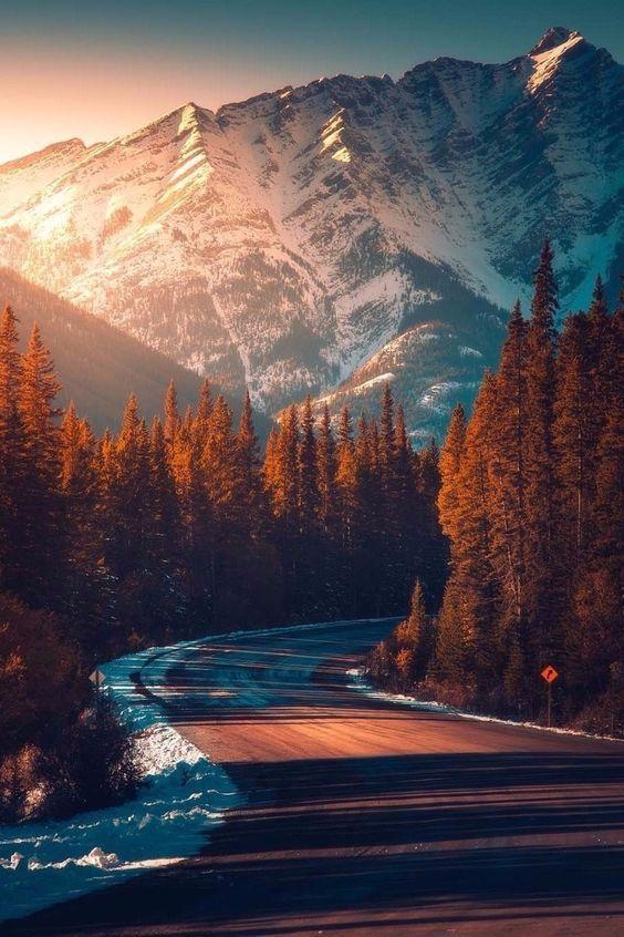 Travel – World – Planet – Sea – Forest – Lake – Mountain